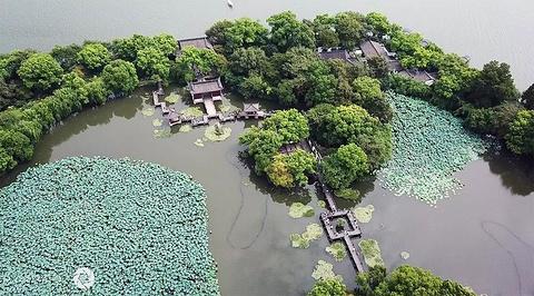 杨公堤的图片
