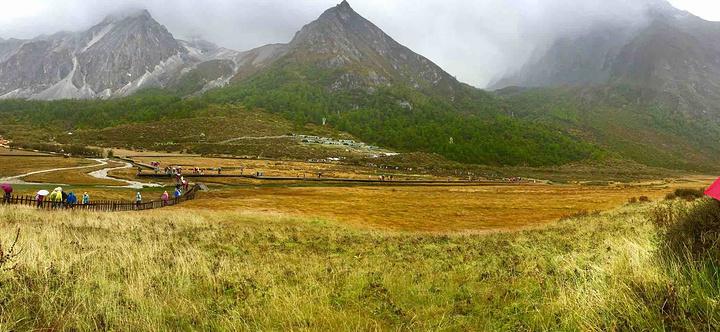 """""""洛绒牛场是亚丁景区内著名的景点,海拔4150米,是附近村民放牧的高山牧场,成群的牛羊在这里享受..._洛绒牛场""""的评论图片"""