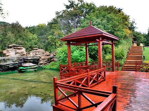 英杰温泉旅游景点图片