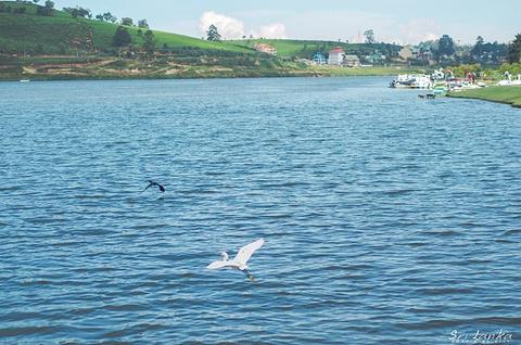 格雷戈里湖旅游景点攻略图