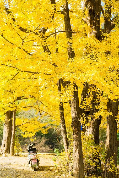 云岩寺图片