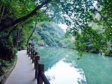 溪口旅游景点攻略图片