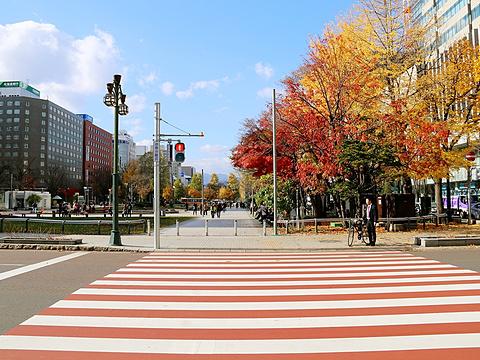 大通公园旅游景点图片