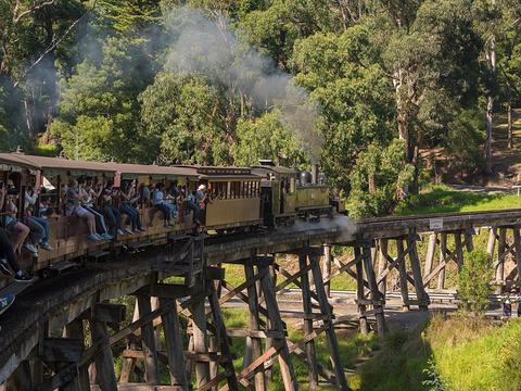 阿德莱德-墨尔本,我想带你去浪漫的南澳洲