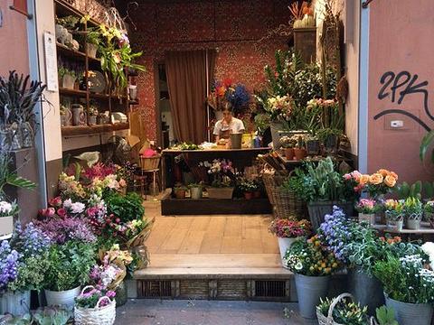 米兰黄金四角区旅游景点图片