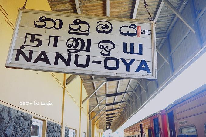 Nanu Oya Railway Station图片