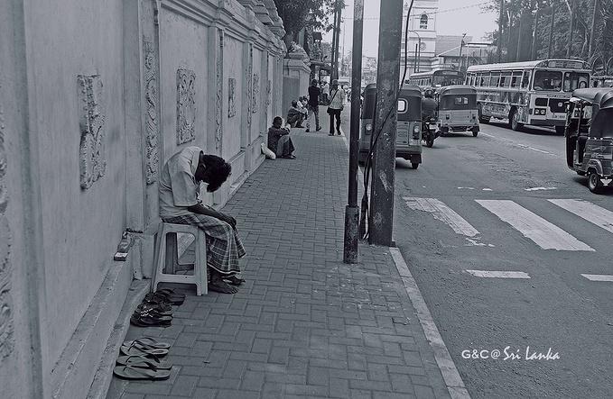 科伦坡图片