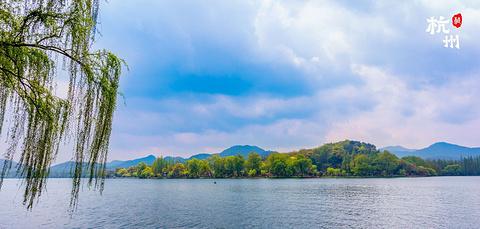西湖的图片