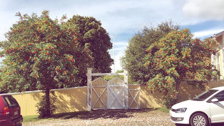 """""""我喜欢波尔沃的色彩,明快的红色、黄色、浅绿色的房子。忍不住拿起朋友的相机拍几张他们的小院和窗花_波尔沃古城""""的评论图片"""