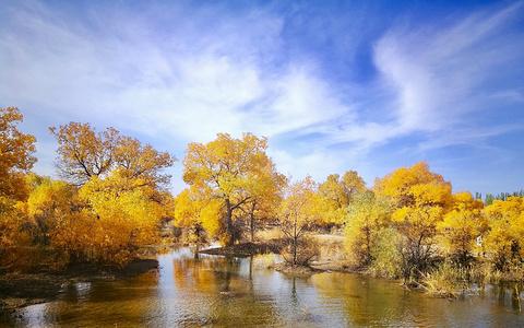 金塔沙漠胡杨林景区旅游景点攻略图