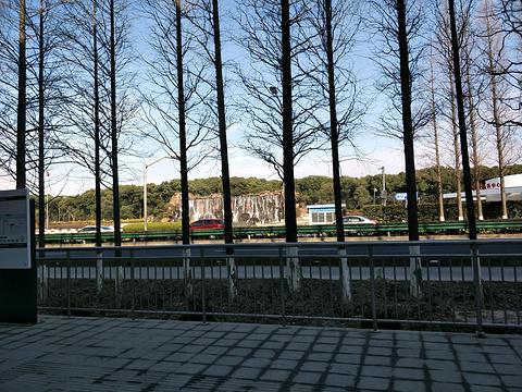 东方绿舟旅游景点图片