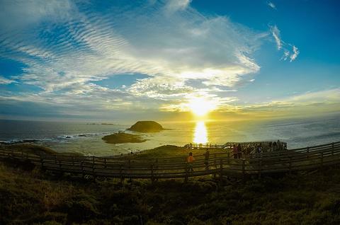 菲利普岛旅游景点攻略图