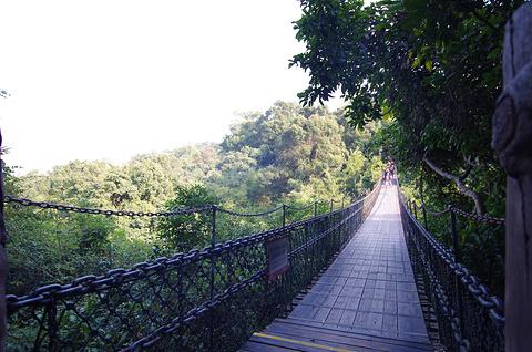 三洲茶园旅游景点攻略图
