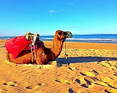 不输摩洛哥的美景!接近东南亚的物价!中国公民还免签!这个非洲小国值得你来一次!