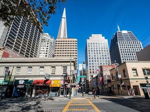 旧金山唐人街旅游景点图片