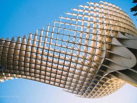 都市阳伞旅游景点图片