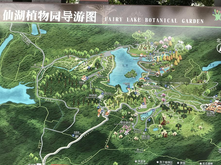 仙湖植物园旅游导图