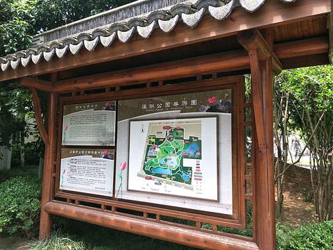瀛洲公园旅游景点图片
