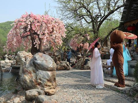 圣鑫庄园旅游景点图片