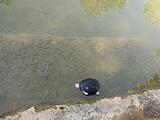 衡水旅游景点攻略图片