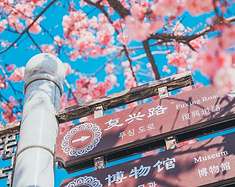 【收藏贴】国内12个热门城市,85条绝赞旅行经验,推荐给喜爱旅行的你!