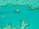 汉密尔顿岛旅游景点攻略图片
