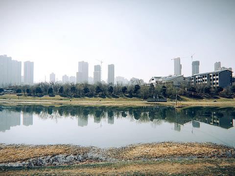 桃花潭公园旅游景点图片