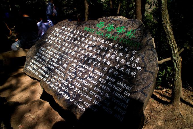 天子山/贺龙公园(1小时)图片