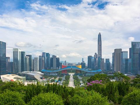 2020莲花山公园-旅游攻略-门票-地址-问答-游记点评,深圳旅游旅游景点推荐-去哪儿攻略