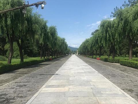 神路公园旅游景点图片