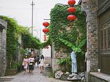 南京旅游景点yabo2010.com图片
