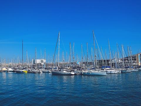 巴塞罗那塔海滩旅游景点图片