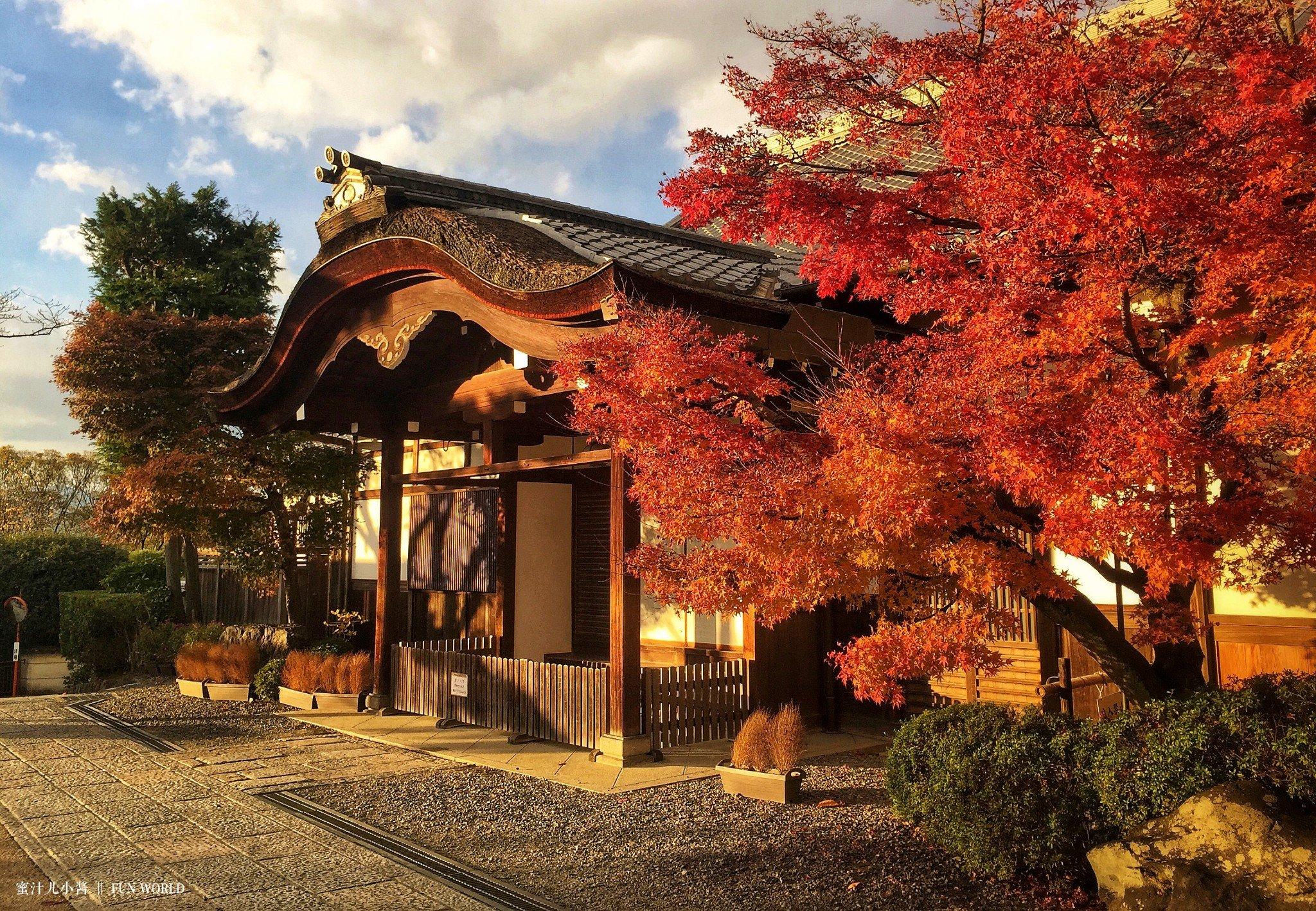 京都赏枫5日线路