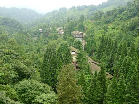 青城山旅游景点图片