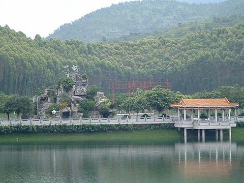 雁鸣湖国家级自然保护区旅游景点图片