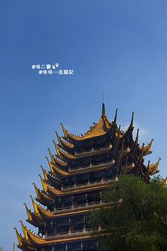 广德寺风景区的图片