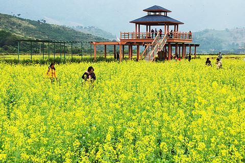 玉龙寨旅游景点攻略图