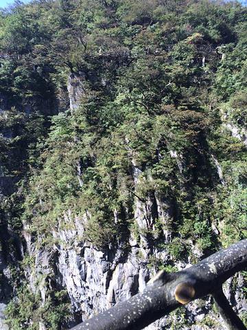 """""""路线有好多人发,大部分都是推荐住在山里的丁香榕村,这样游览起来确实比较方便。风景不用说,值得一看_张家界国家森林公园""""的评论图片"""