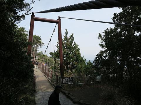 门胁吊桥旅游景点图片