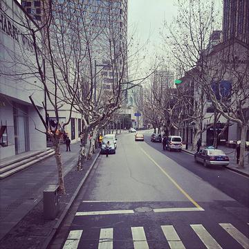BUS TOUR 上海观光游