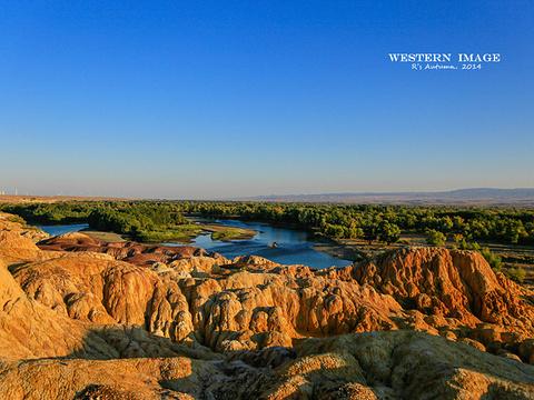 额尔齐斯河旅游景点图片