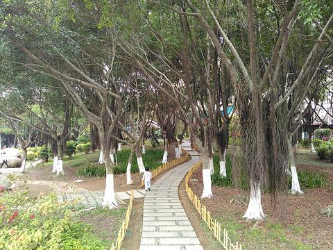 江头公园旅游景点图片