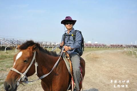 珠日河草原旅游区旅游景点攻略图