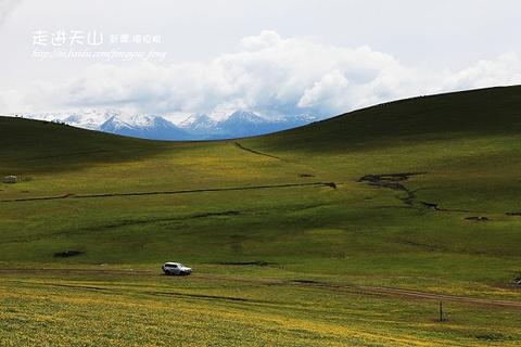 伊犁河谷旅游景点攻略图