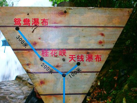迷人谷旅游景点图片