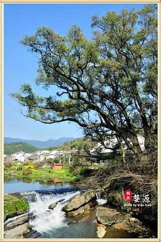 """""""透过桥孔远望上游,青山绿水、稻田村庄层次分明,别有洞天。慢慢走到了河边, 才能发现这座桥的特别之处_察关""""的评论图片"""