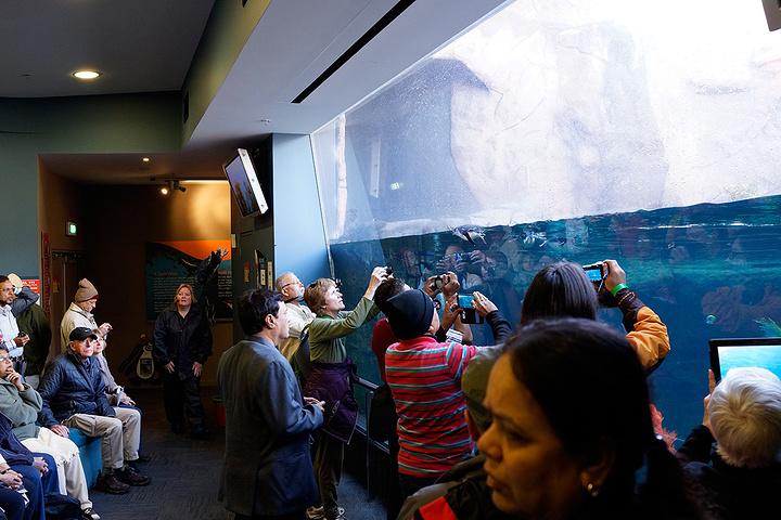 """""""今天是自驾的最后一天_国际南极中心""""的评论图片"""