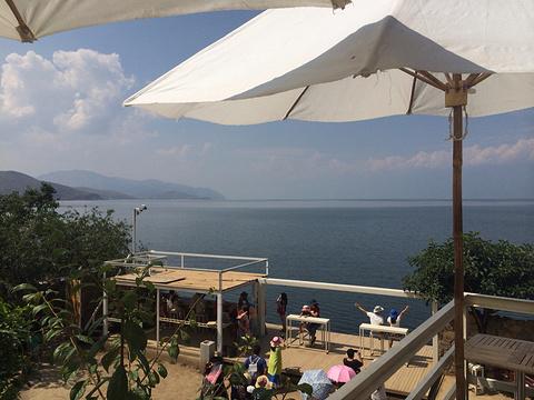 海地咖啡馆旅游景点图片