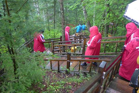 长白山峡谷浮石林旅游景点攻略图