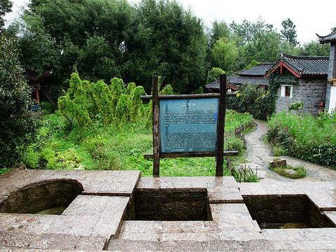 束河三眼井旅游景点图片